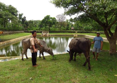 Water resources and rural development in Indonesia